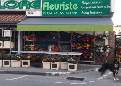 Pose d'un store intérieur et store banne – LA VOULTE SÛR RHÔNE (07)
